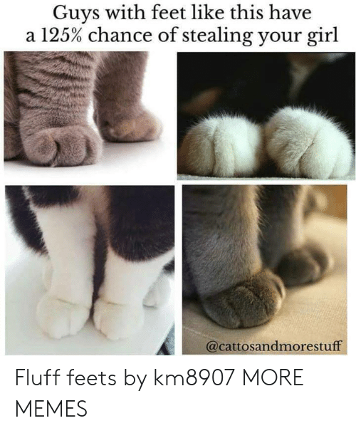 Dank, Memes, and Target: Guys with feet like this have  a 125% chance of stealing your girl  @cattosandmorestuff Fluff feets by km8907 MORE MEMES
