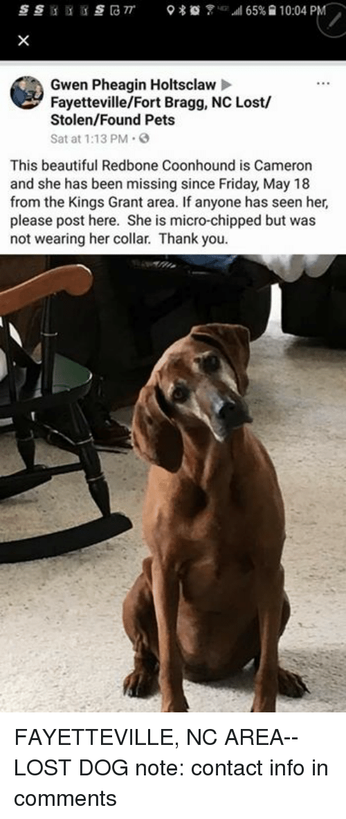 Beautiful, Friday, and Memes: Gwen Pheagin Holtsclaw  Fayetteville/Fort Bragg, NC Lost/  Stolen/Found Pets  Sat at 1:13 PM  This beautiful Redbone Coonhound is Cameron  and she has been missing since Friday, May 18  from the Kings Grant area. If anyone has seen her,  please post here. She is micro-chipped but was  not wearing her collar. Thank you. FAYETTEVILLE, NC AREA-- LOST DOG  note: contact info in comments
