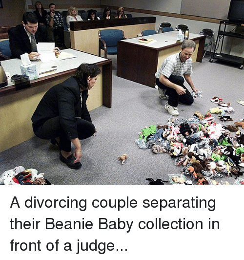 Dank, 🤖, and Riled: gx  rile A divorcing couple separating their Beanie Baby collection in front of a judge...