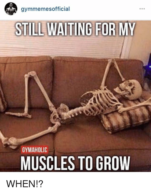Grow and  Growing: gymmemesofficial  STILLWATING FOR MY  GYMAHOLIC  MUSCLES TO GROW WHEN!?