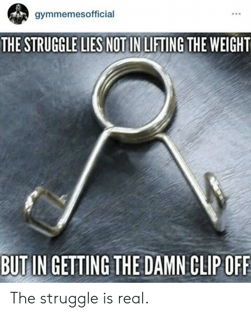Struggle, The Struggle Is Real, and Real: gymmemesofficial  THE STRUGGLE LIES NOT IN LIFTING THE WEIGHT  BUTIN GETTING THE DAMN CLIPOFF The struggle is real.