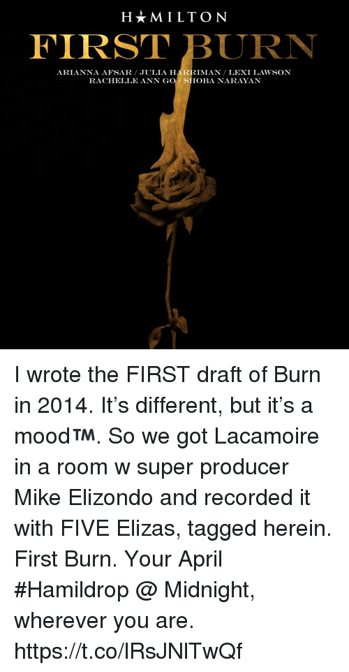 Memes, Tagged, and April: H*MILTON  FIRST BURN  ARIANNA AFSAR JULIA HARRIMAN LEXI LAWSON  RACHELLE ANN GO SHOBA NARAYAN I wrote the FIRST draft of Burn in 2014. It's different, but it's a mood™️. So we got Lacamoire in a room w super producer Mike Elizondo and recorded it with FIVE Elizas, tagged herein. First Burn. Your April #Hamildrop @ Midnight, wherever you are. https://t.co/lRsJNlTwQf