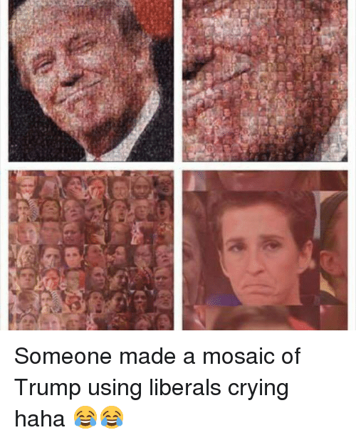 Conservative, Liberalism, and Liberal: [H Someone made a mosaic of Trump using liberals crying haha 😂😂
