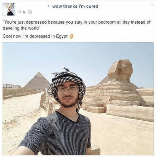 """Memes, Wow, and Cool: h wow thanks i'm cured  11 h,  You're just depressed because you stay in your bedroom all day instead of  traveling the world""""  Cool now I'm depressed in Egypt d"""