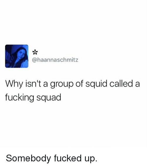 Fucking, Funny, and Squad: @haannaschmitz  Why isn't a group of squid called a  fucking squad Somebody fucked up.