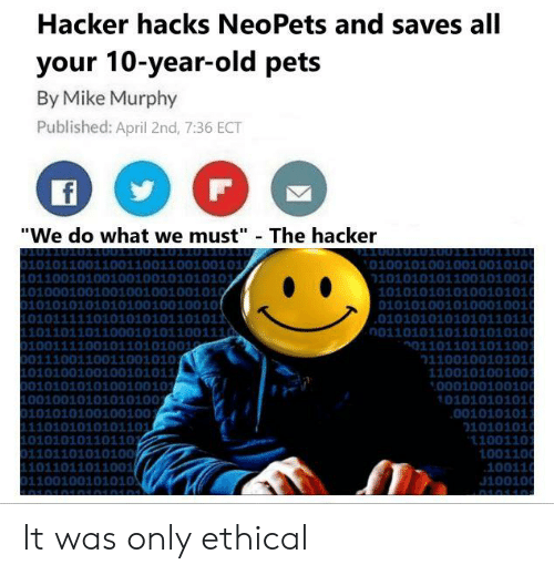 Hacker Hacks NeoPets and Saves All Your 10-Year-Old Pets by
