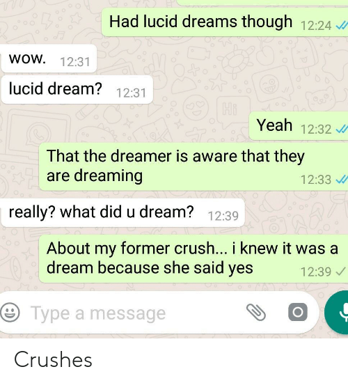 A Dream, Crush, and Wow: Had lucid dreams though 12:24  wOW  12:31  Jucid dream? 12:31  Hi  Yeah 12:32  That the dreamer is aware that they  are dreaming  12:33  really? what did u dream? 12:39  About my former crush... i knew it was a  dream because she said yes  12:39  Type a message Crushes