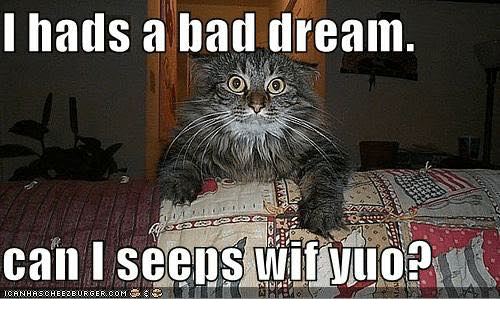 hads a bad dream can i seens wif vuop 10161841 ✅ 25 best memes about had a bad dream had a bad dream memes,Dream Meme