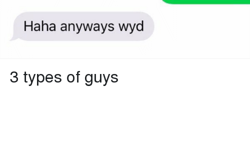 Wyd, Girl Memes, and Haha: Haha anyways wyd 3 types of guys