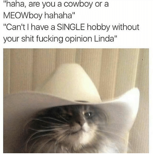"Fucking, Funny, and Shit: ""haha, are you a cowboy or a  MEOWboy hahaha""  ""Can't l have a SINGLE hobby without  your shit fucking opinion Linda"""