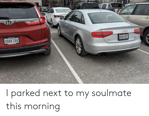 Haha, Car, and Next: HAHA CAR  HAHA WUT I parked next to my soulmate this morning
