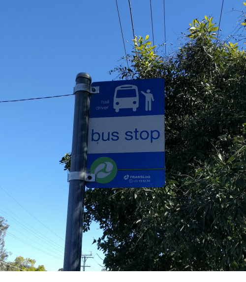 Hail Driver Bus Stop AD TRANSLink Ginfo 13 1230 | Driver Meme on ME ME