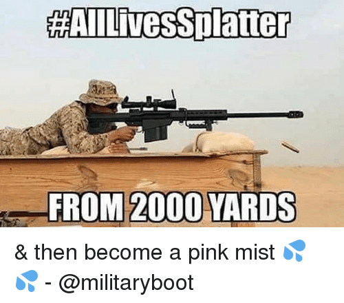Memes, Pink, and 🤖: HAILivesSplatter  FROM 2000 YARDS & then become a pink mist 💦💦 - @militaryboot