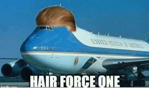 Hair, Mexican Word of the Day, and Force: HAIR FORCE ONE