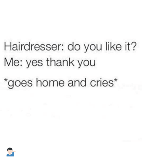 Funny, Thank You, and Home: Hairdresser: do you like it?  Me: yes thank you  *goes home and cries 💁🏻‍♂️