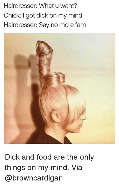 Girl Memes, Say No More, and What U: Hairdresser  What u want?  Chick: got dick on my mind  Hairdresser: Say no more fam Dick and food are the only things on my mind. Via @browncardigan