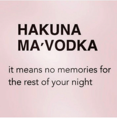 Vodka, Rest, and Mø: HAKUNA  MA VODKA  it means no memories for  the rest of your night
