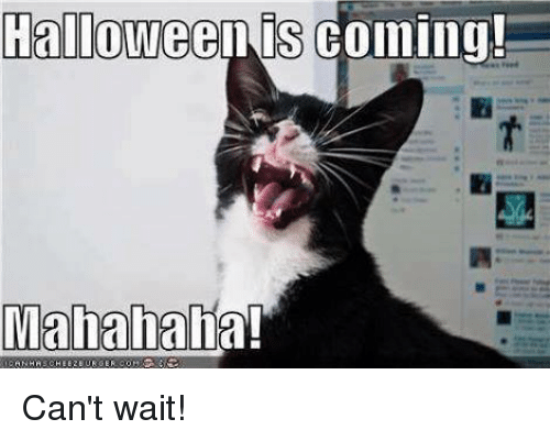Halloween, Memes, and Waiting...: Halloween is coming  Mahahaha! Can't wait!
