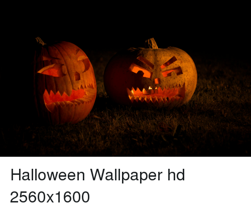 Exceptional Funny, Halloween, And Wallpaper