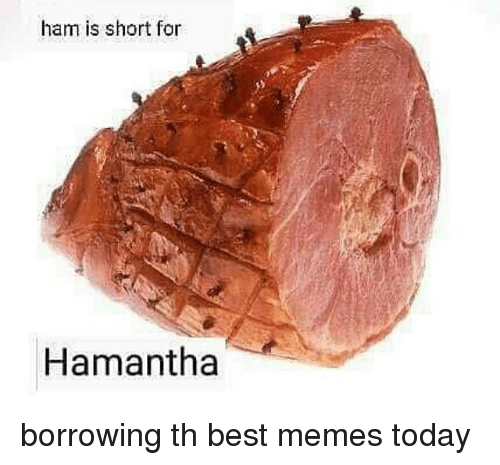 Memes, Best, and Today: ham is short for  Hamantha borrowing th best memes today
