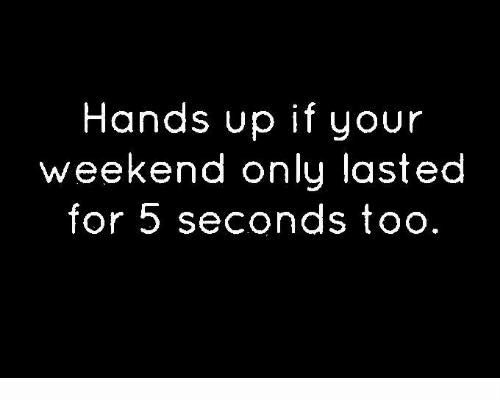 Dank, 🤖, and Weekend: Hands up if your  weekend only lasted  for 5 seconds too
