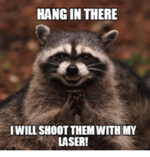 25 best memes about grumpy cat hang in there grumpy cat hang laser lasers and hang in there hang in there iwill shoot them with my laser sciox Image collections