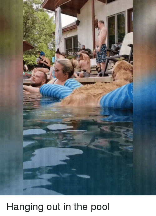 Funny, Pool, and  Hanging: Hanging out in the pool