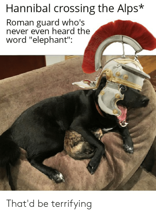 """Elephant, History, and Word: Hannibal crossing the Alps*  Roman guard who's  never even heard the  word """"elephant"""": That'd be terrifying"""