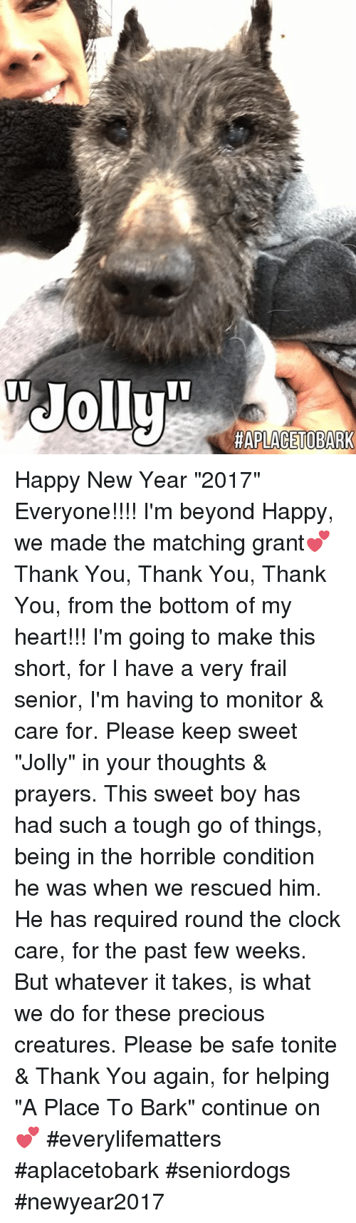 """Clock, Memes, and 2017: HAPLACETOBARK Happy New Year """"2017"""" Everyone!!!! I'm beyond Happy, we made the matching grant💕 Thank You, Thank You, Thank You, from the bottom of my heart!!! I'm going to make this short, for I have a very frail senior, I'm having to monitor & care for.  Please keep sweet """"Jolly"""" in your thoughts & prayers.  This sweet boy has had such a tough go of things, being in the horrible condition he was when we rescued him.  He has required round the clock care, for the past few weeks.  But whatever it takes, is what we do for these precious creatures. Please be safe tonite & Thank You again, for helping """"A Place To Bark"""" continue on💕  #everylifematters #aplacetobark #seniordogs #newyear2017"""