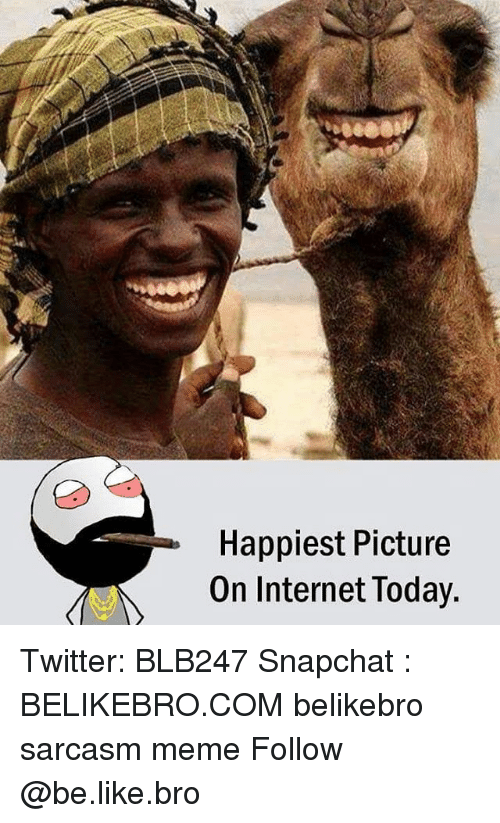 Be Like, Internet, and Meme: Happiest Picture  On Internet loday. Twitter: BLB247 Snapchat : BELIKEBRO.COM belikebro sarcasm meme Follow @be.like.bro