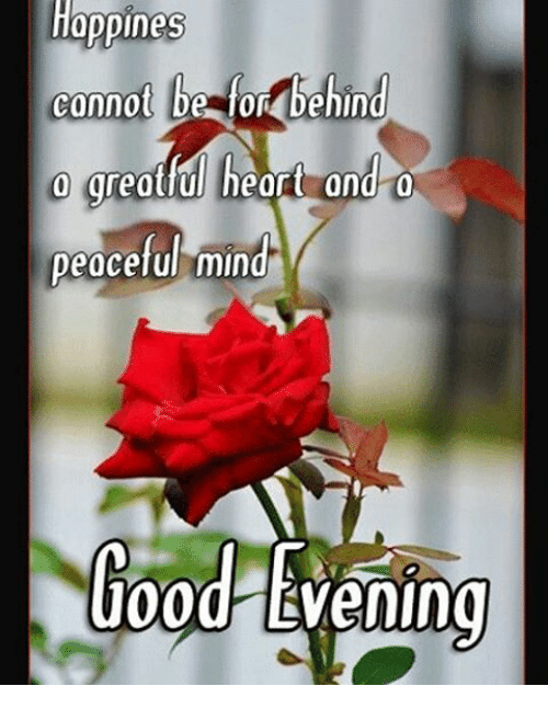 Happiness connot be for behind peaceful mind good evening meme on memes and good evening happiness connot be for behind peaceful mind good altavistaventures Images