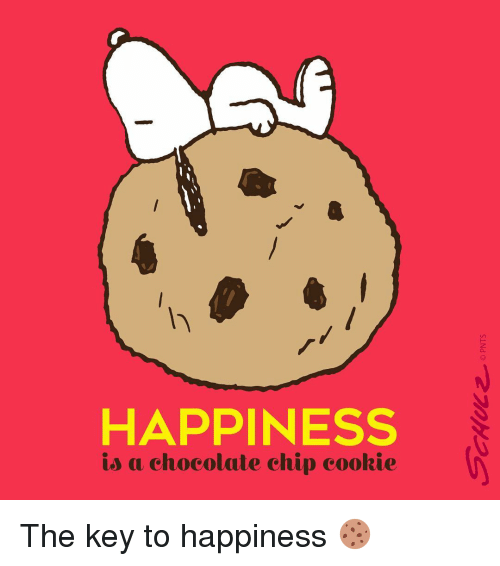 Cookies, Memes, and Chocolate: HAPPINESS  is a chocolate chip cookie The key to happiness 🍪