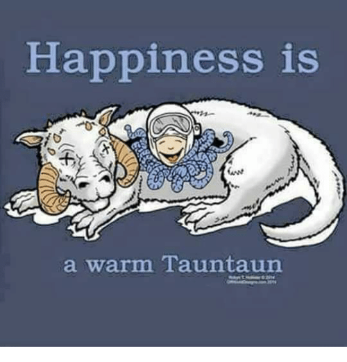 Memes, Happy, and Happiness: Happiness is  a warm Tauntaun
