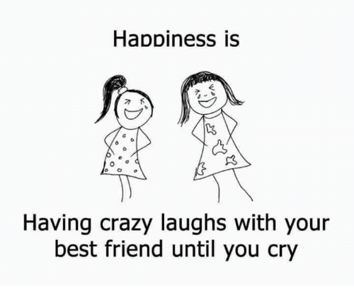 Best Friend, Crazy, and Memes: Happiness is  Having crazy laughs with your  best friend until you cry