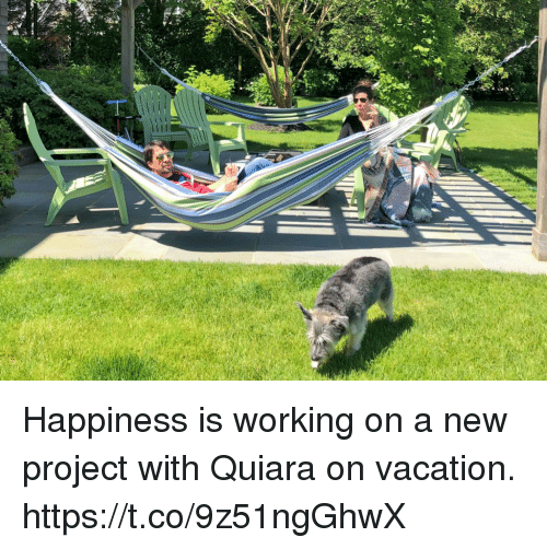 Memes, Vacation, and Happiness: Happiness is working on a new project with Quiara on vacation. https://t.co/9z51ngGhwX