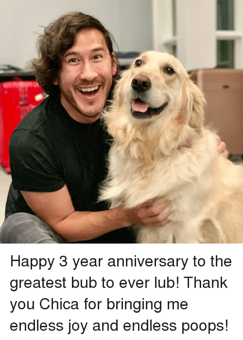 Dank, Thank You, and Happy: Happy 3 year anniversary to the greatest bub to ever lub! Thank you Chica for bringing me endless joy and endless poops!