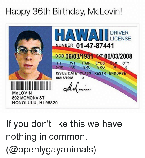 Birthday, Ironic, and Common: Happy 36th Birthday, McLovin  DRIVER  LICENSE  BER 01-47-87441  DOB 06103198  EMP 06/03/2008  HT WT  HAIR EYES  SEK CTY  5-10 150  BRO  BRO  M  ISSUE DATE CLASS  RESTR ENDORSE  06/18/1998  3  McLOVIN  892 MOMONA ST  HONOLULU, HI 96820 If you don't like this we have nothing in common. (@openlygayanimals)