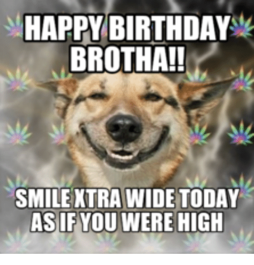 happy birthday brotha smile xtra wide today asif you were 13963337 ✅ 25 best memes about happy birthday smiling dog happy