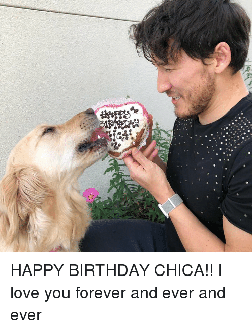 happy birthday chica i love you forever and ever and 31844171 ✅ 25 best memes about forever and ever forever and ever memes