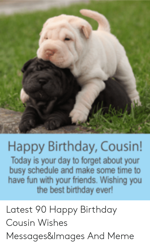 Happy Birthday Cousin! Today Is Your Day to Forget About Your Busy