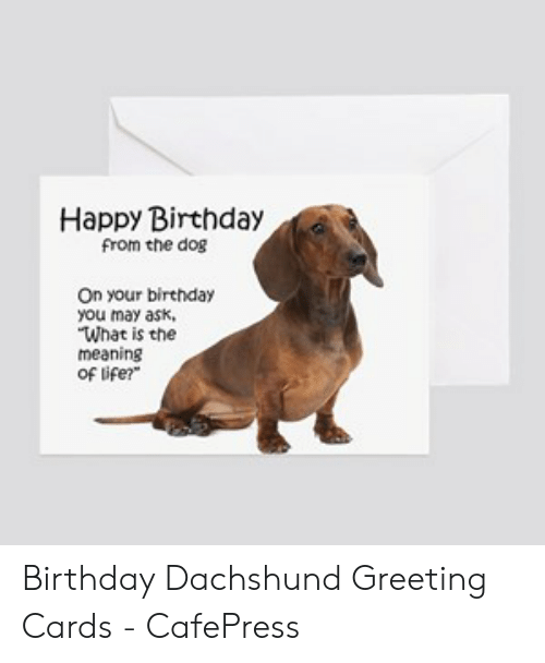 Happy Birthday From The Dog On Your You May Ask What Is