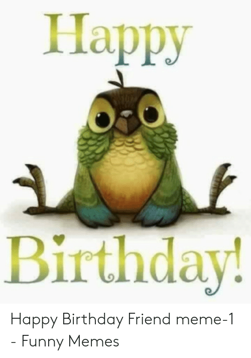 Terrific Happy Birthday Happy Birthday Friend Meme 1 Funny Memes Funny Birthday Cards Online Alyptdamsfinfo