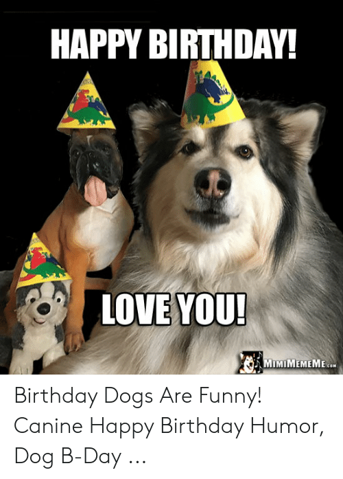 Birthday Dogs And Funny HAPPY BIRTHDAY LOVE YOU MIMIMEMEME