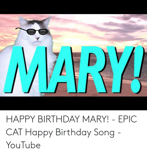 Happy Birthday Mary Epic Cat Happy Birthday Song Youtube