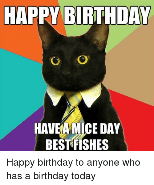 https://pics.me.me/happy-birthday-o-o-havea-mice-day-best-fishes-happy-12708025.png