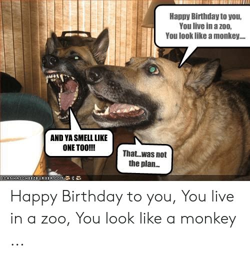 Birthday, Happy Birthday, and Happy: Happy Birthday to you,  You live in a zoo,  You look like a monkey..  AND YA SMEIL LIKE  ONETOO!!!  That.was not  the plan.  CA NHASCHEEZBURGER.CO1 MAgot︸ Happy Birthday to you, You live in a zoo, You look like a monkey ...