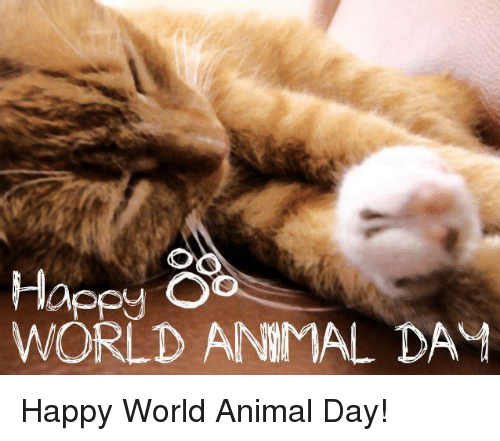 Image result for happy world animal day images