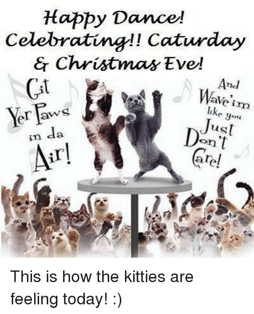 https://pics.me.me/happy-dance-celebrating-caturday-christmas-eve-anel-ave-im-10005573.png