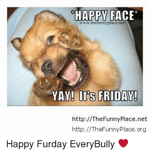 Happy Face Wwwthefunny Place Net Yay Its Friday Http The Funny