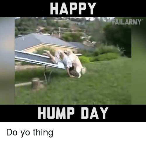 Hump Day, Memes, and Yo: HAPPY  FAILARMY  HUMP DAY Do yo thing